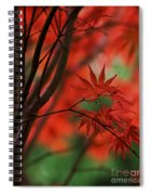 Acer Fanfare Spiral Notebook