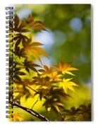 Acer Glow Spiral Notebook