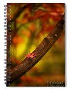 Acer Resting Spiral Notebook