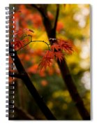 Acer Silhouette Spiral Notebook