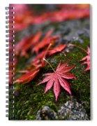Acers Fallen Spiral Notebook
