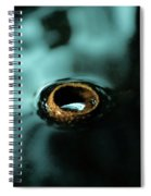 Acorn Cap Spiral Notebook