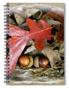 Acorns And Oak Leaves Spiral Notebook