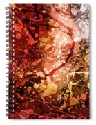 Acquiescence Spiral Notebook