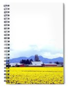 Acres Of Daffodils Spiral Notebook