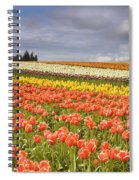 Across Colorful Fields Spiral Notebook
