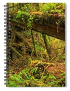 Across The Ravine Spiral Notebook