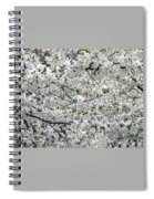 Adams County White-out Spiral Notebook
