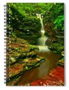 Adams Falls Portrait Spiral Notebook