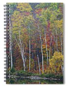 Adirondack Birch Foliage Spiral Notebook
