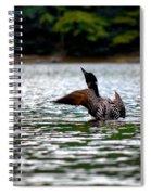 Adirondack Loon 4 Spiral Notebook