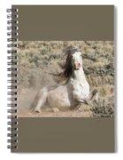 Adobe Wind Spiral Notebook