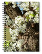 Adorned With Beauty Spiral Notebook