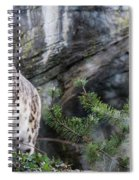 Adult Snow Leopard Standing On Rocky Ledge Spiral Notebook