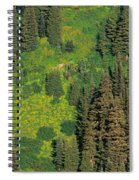Aerial View Of Forest On Mountainside Spiral Notebook