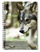 Aero Wolf 1 Spiral Notebook