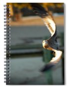 Aeronautical Acrobatics Spiral Notebook