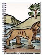 Aesop: Dog & Shadow, 1484 Spiral Notebook
