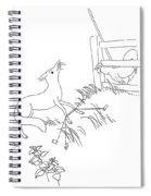 Aesop: Fox And Rooster Spiral Notebook