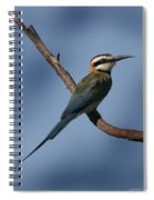 African Bee Eater Spiral Notebook