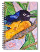 African Blue Eared Starling Spiral Notebook