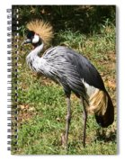 African Crowned Crane Poising Spiral Notebook