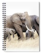 African Elephant Group Isolated Spiral Notebook