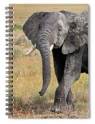 African Elephant Happy And Free Spiral Notebook