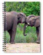 African Elephants Interacting Spiral Notebook
