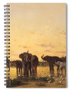 African Elephants Spiral Notebook