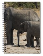 African Elephants Mother And Baby Spiral Notebook