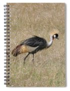 African Grey Crown Crane Spiral Notebook