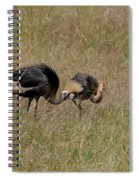 African Grey Crowned  Crane With Chick Spiral Notebook