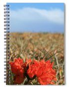 African Tulip Blossom Over Pineapple Field Aloha Makawao Spiral Notebook