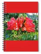 African Tulip Flower #2 Spiral Notebook