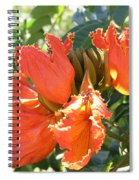 African Tulips Spiral Notebook