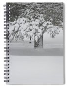 After The Blizzard Spiral Notebook