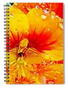 After The Rain Color Spiral Notebook