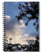 After The Rain II Spiral Notebook