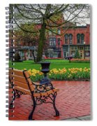 After The Spring Rain Spiral Notebook