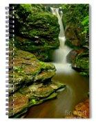 Afternoon At Adams Falls Spiral Notebook