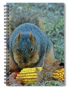 Afternoon Delight Spiral Notebook