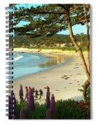 Afternoon On Carmel Beach Spiral Notebook