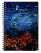 Afternoon On The Reef Spiral Notebook