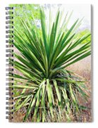Afternoon Yucca Spiral Notebook