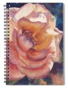 Aftrnoon Glow Spiral Notebook