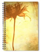 Against All Odds Spiral Notebook