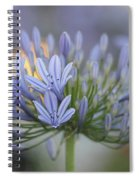 Agapanthus Africanus - Lily Of The Nile 2 Spiral Notebook