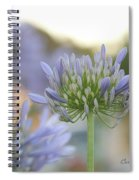 Agapanthus Africanus - Lily Of The Nile Spiral Notebook