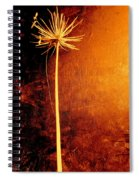 Agapanthus After The Storm Spiral Notebook